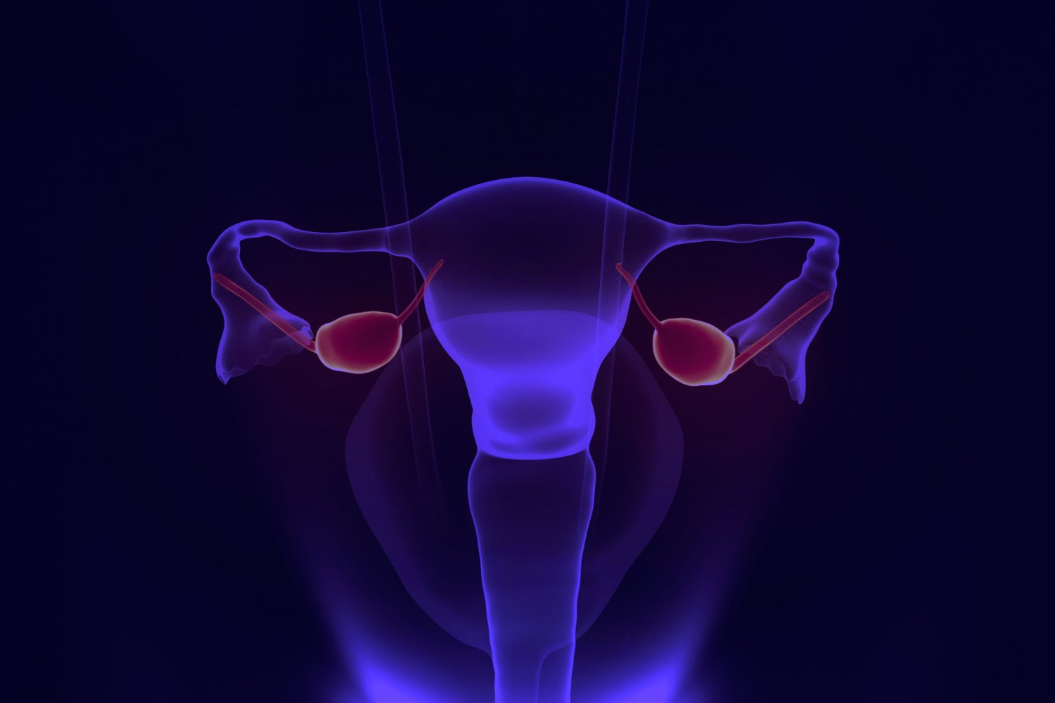 Ipilimumab plus nivolumab for persistent or recurrent ovarian cancer
