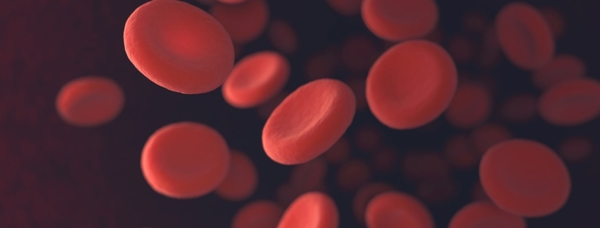 Patient Blood Management and Treatment of iron Deficiency Anaemia in Gynaecological Conditions